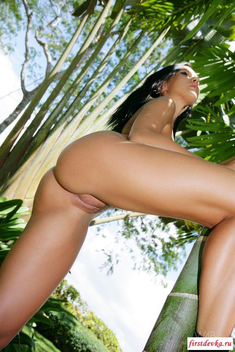 Пышногрудая девка обняла пальму